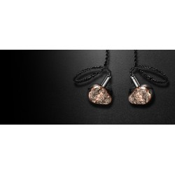 Vision Ears - Erlkönig - Limited edition Silver shell universels In Ear
